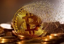 Future of Cryptocurrency: Will Regulation or Decentralization Win?